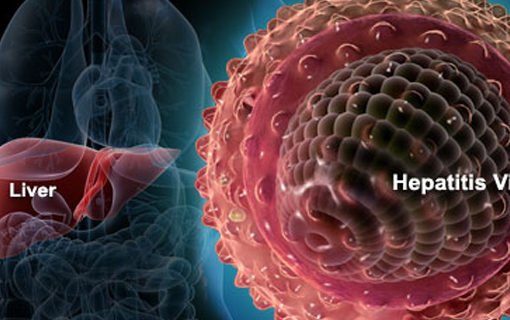 effect of Hepatitis a to C