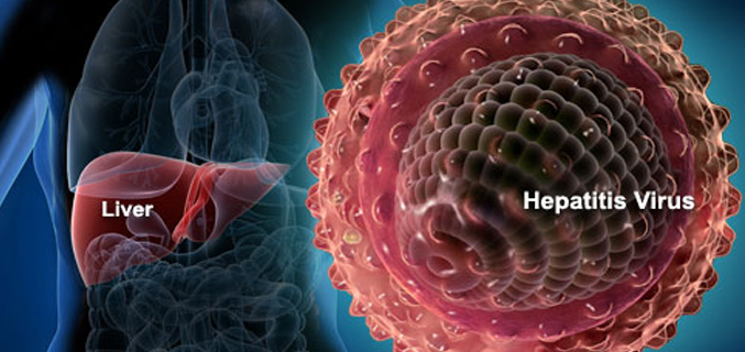 effect of Hepatitis a to C